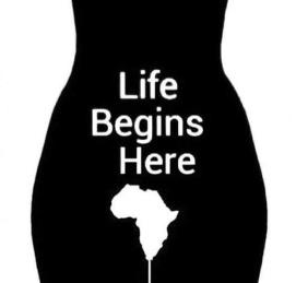 life-begins-here